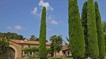 Essenza del Made in Italy, ricerca del Censis voluta da Ornellaia
