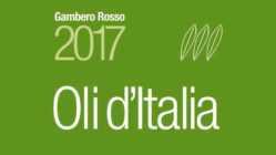 Oli d'Italia premia i migliori extravergine italiani. Oli d'Italia 2017: presentata la guida al Vinitaly nella sezione di Sol&Agrifood