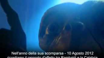 Rambaldi, l'oltraggio al papà di E.T.: quando si perde il rispetto per la storia e la memoria