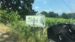 Eccellenze Italiane sul set di Agricola Bellaria, eccellenze vinicole campane